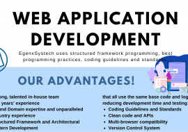 Web Application Development in Pune