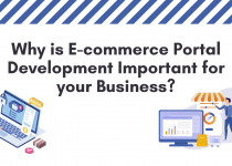Importance of E-commerce Portal Development