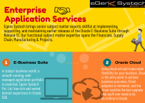 Enterprise Application Services @EgwnxSystech