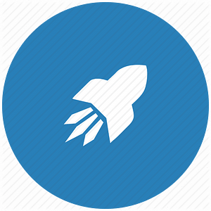 Rocket icon for Consulting Services