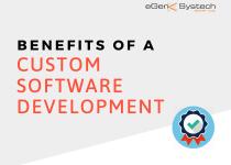 Benefits of Custom Software Development [Infographic]