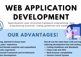 Web Application Development in Pune